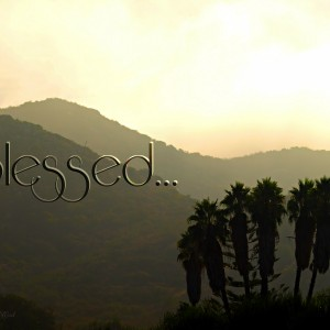 """Blessed the man . . .""  (Psalm 1:1)"