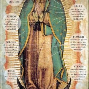 The Amazing Miraculous Story of Our Lady of Guadalupe!