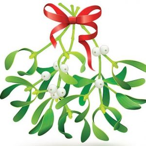 Christmas Symbols and Traditions – MISTLETOE