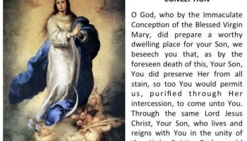 Happy Feast of the Immaculate Conception